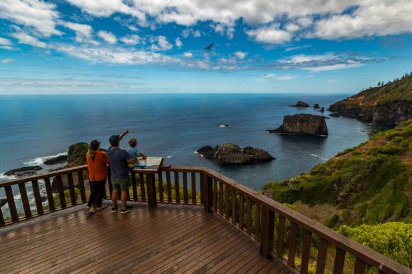Captain Cook Lookout 2