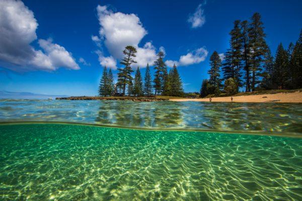 Emily Bay Underwater