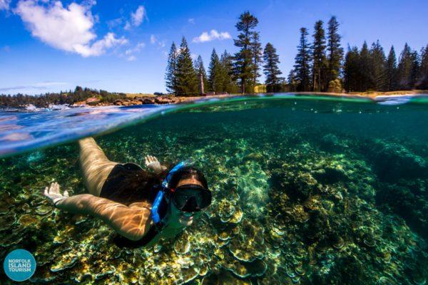 Underwater Norfolk Island