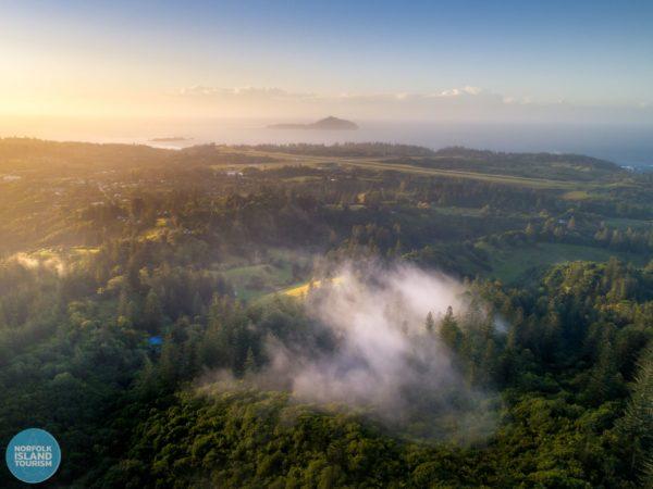 View Mt Pitt 2